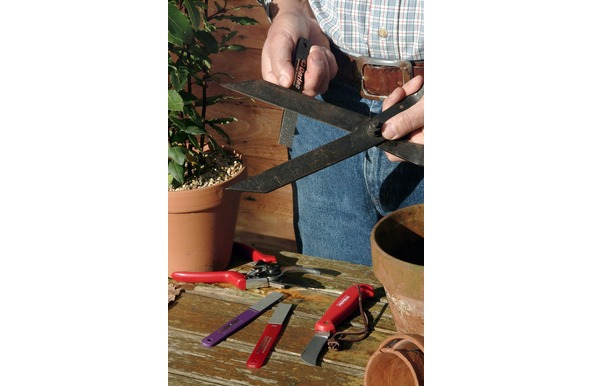 Give your garden tools a spring clean